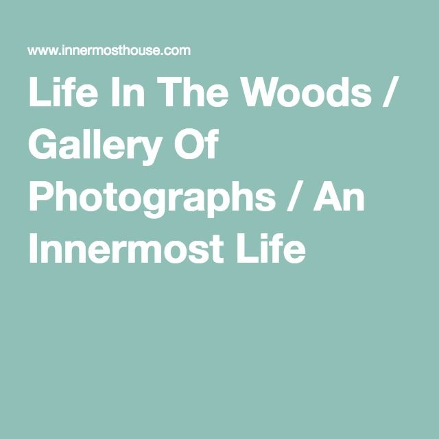 Life In The Woods / Gallery Of Photographs / An Innermost Life