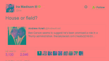 MTV Reporter Tweets Will Carson Be 'House or Field' Slave to Trump? : Related Articles | OOYUZ