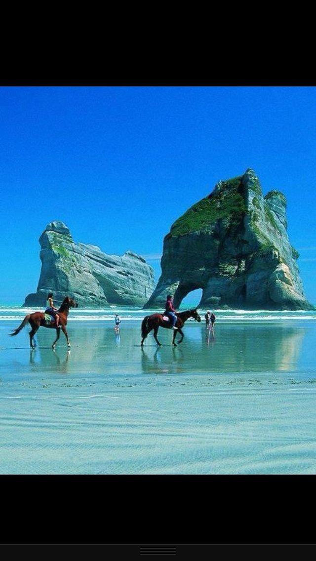 Pony Trekking. New Zealand.