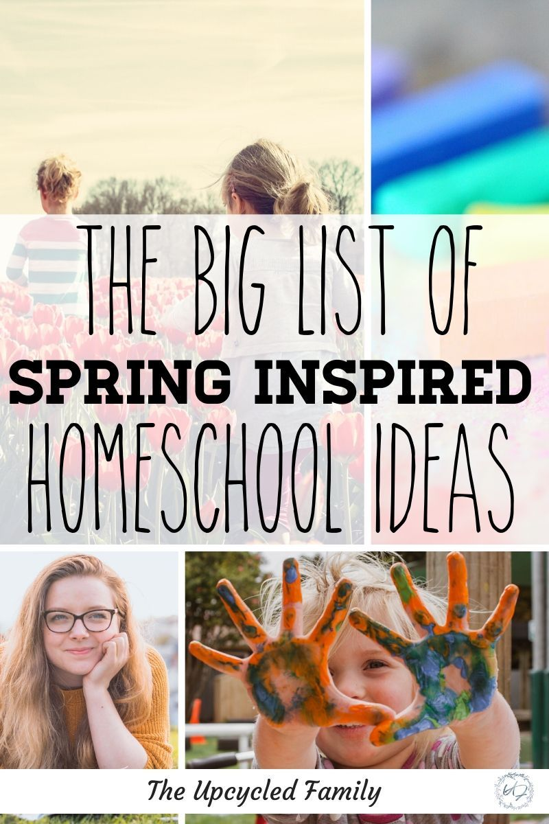 Photo of 20 Fun Spring-Inspired Homeschool Activities
