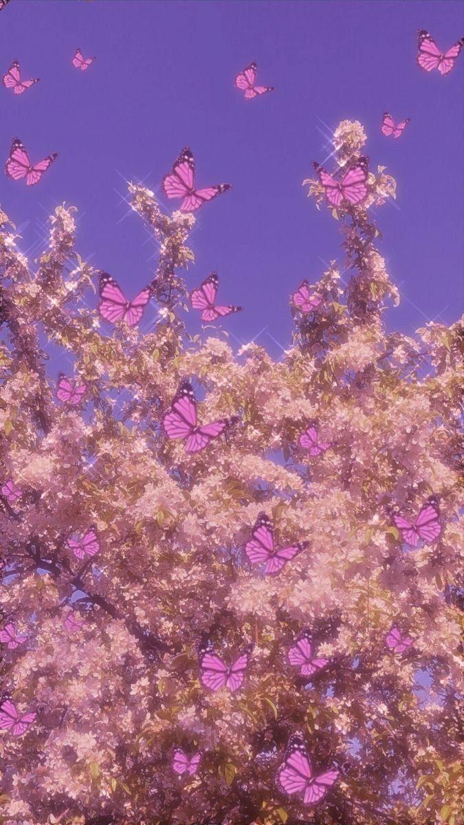 purple butterfly aesthetic in 2020 Iphone wallpaper