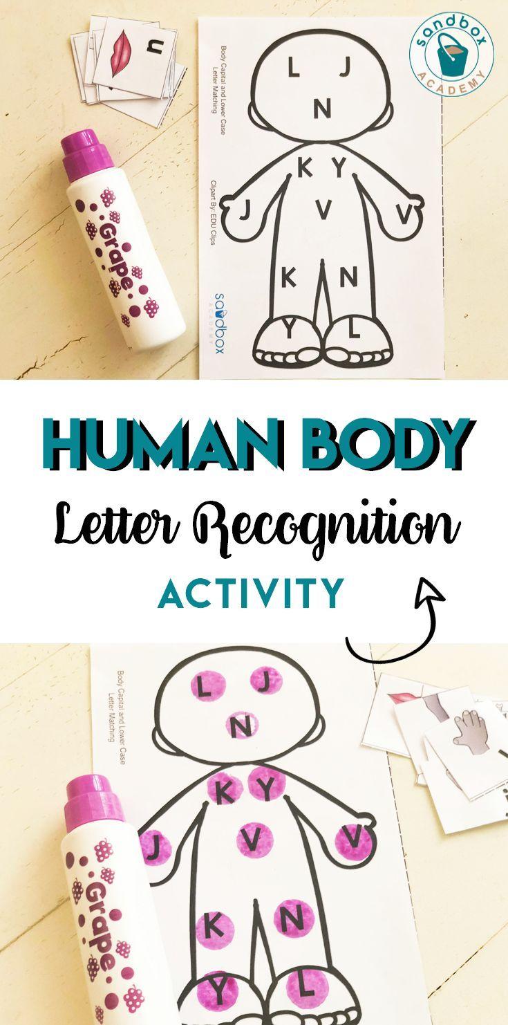 My Body Lesson Bundle | Preschool body theme, Body ...