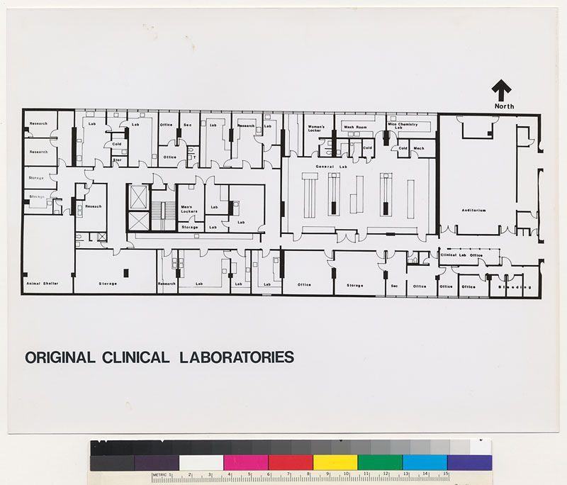 Image Result For Lab In Hospital Workflow Diagram