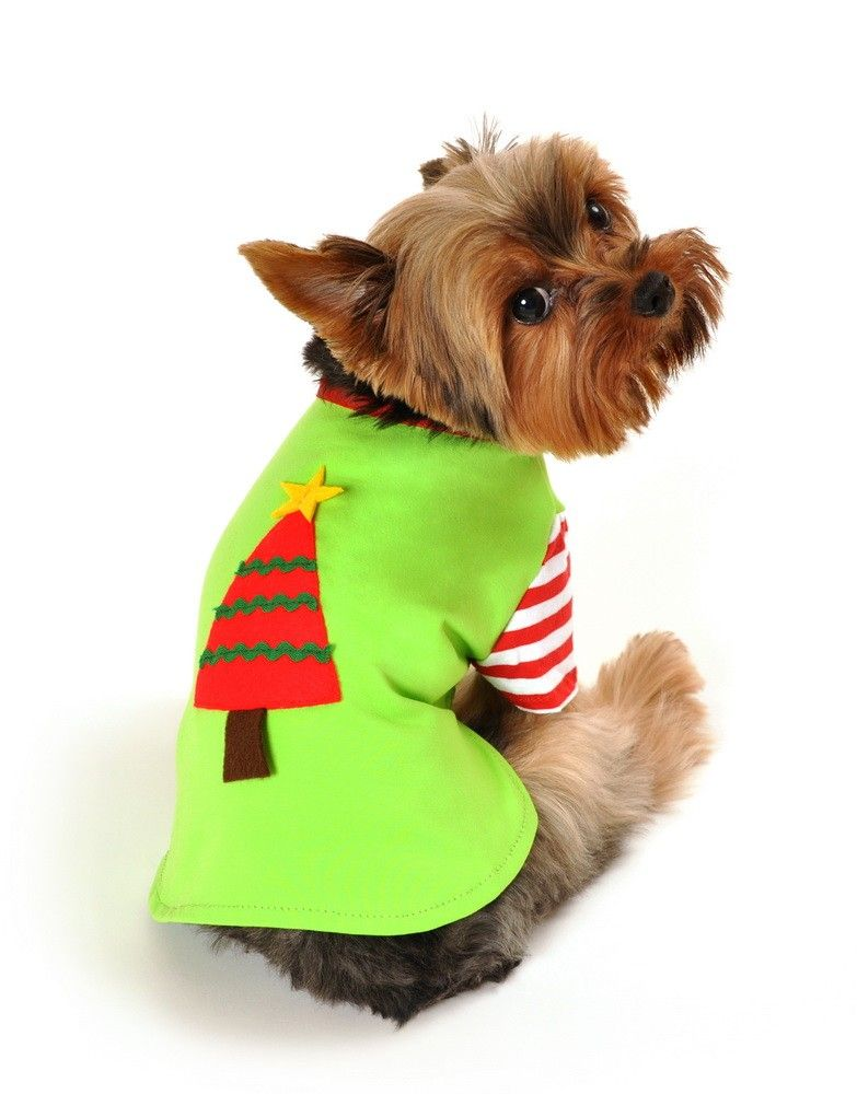 Christmas Tree Shirt Dog Costume - Holiday outfit with striped sleeves. www.anitaccessories.com
