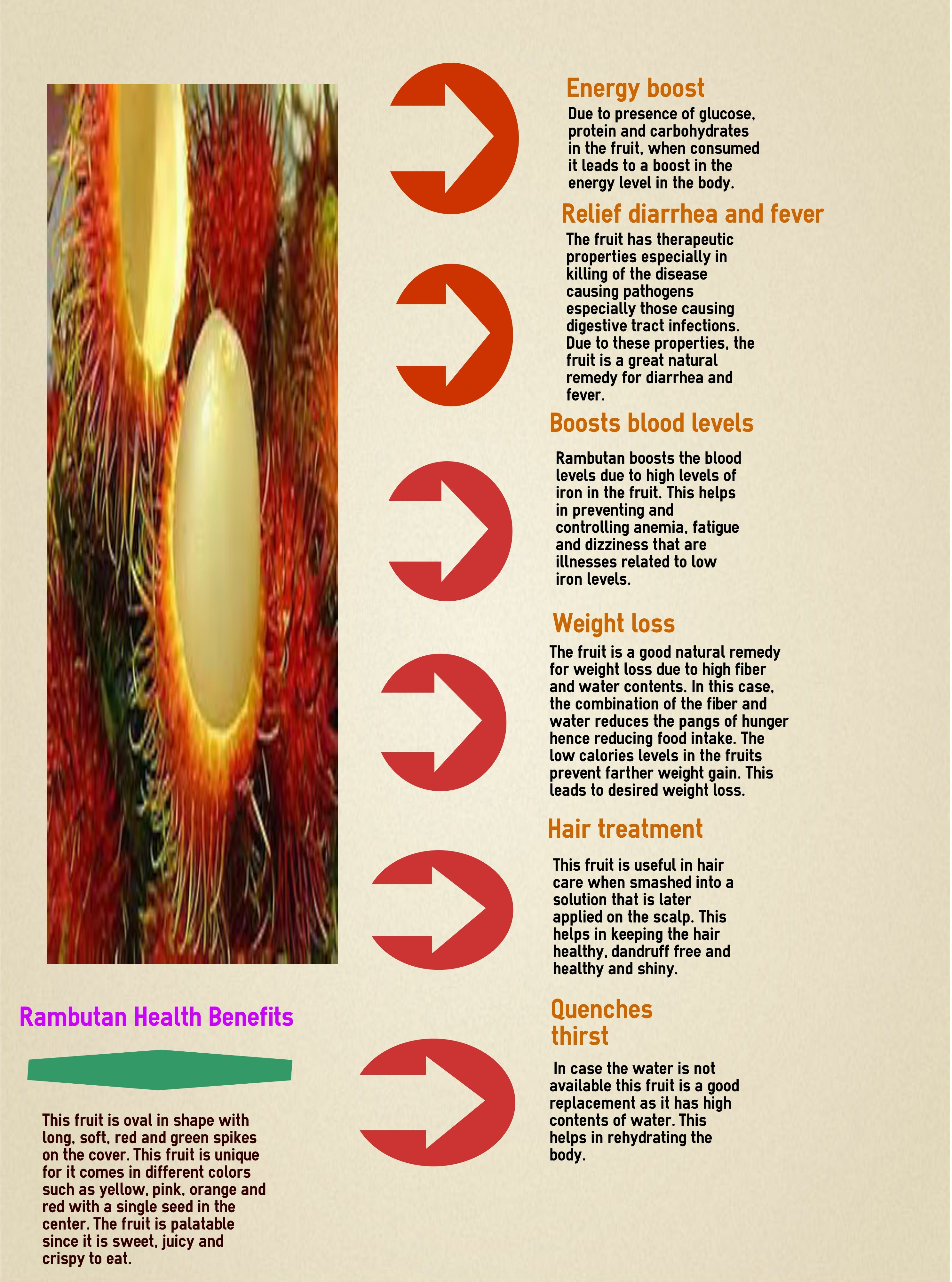 learn all about the health benefits of the rambutan fruit