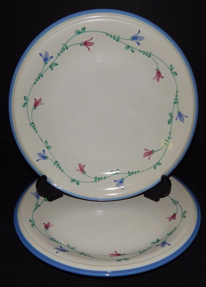 (2) Savoir Vivre PORTOFINO BLUE JF 036 DINNER PLATES Oven to Table Japan 656918 : oven to table dinnerware - pezcame.com