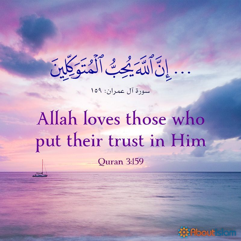 Professional Counselling Services Are Available For Everyone Quran Quotes Inspirational Quran Quotes Quran Verses
