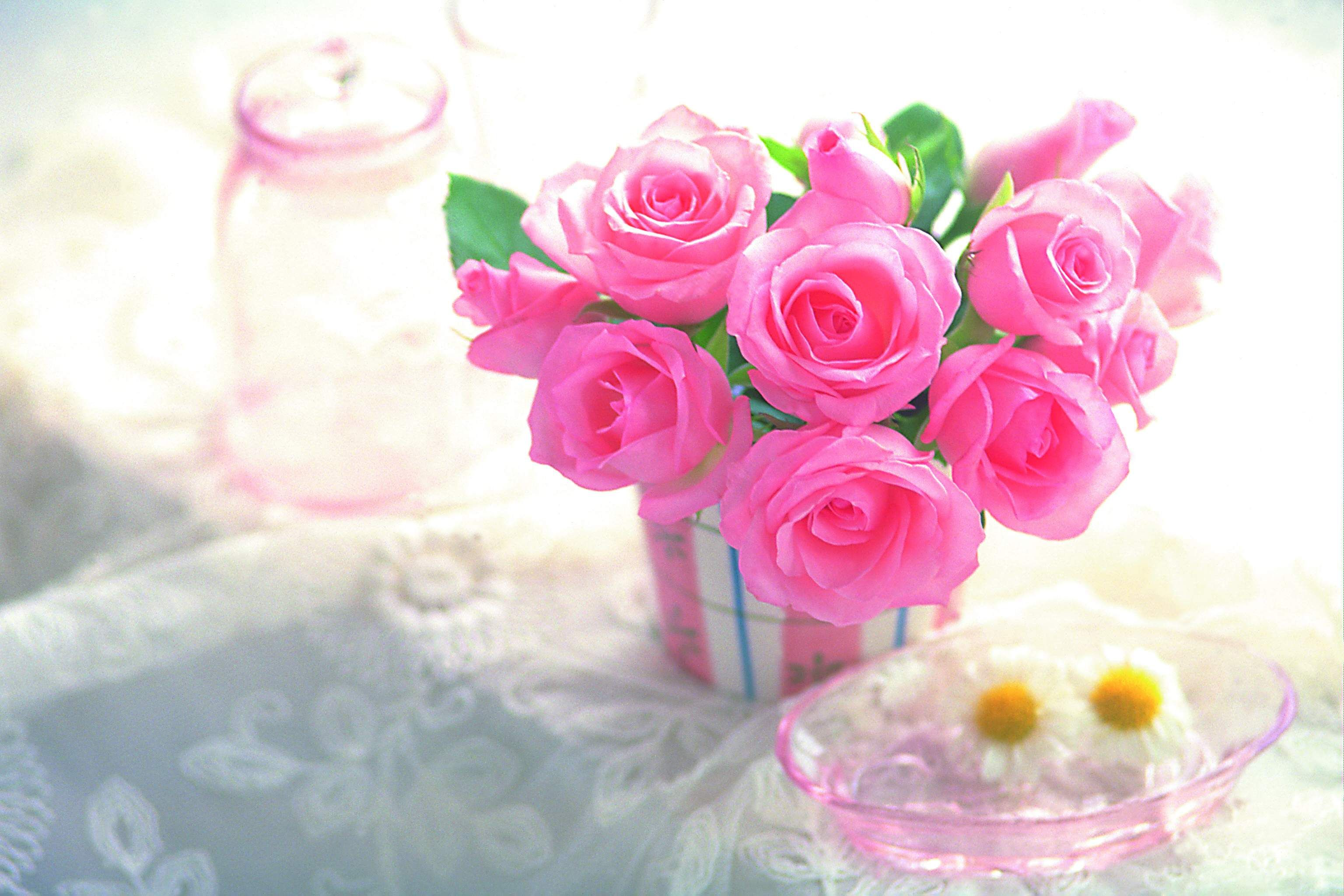 Beautiful Bpink Rosesb Hd Bflower Wallpaperb Cool Hd