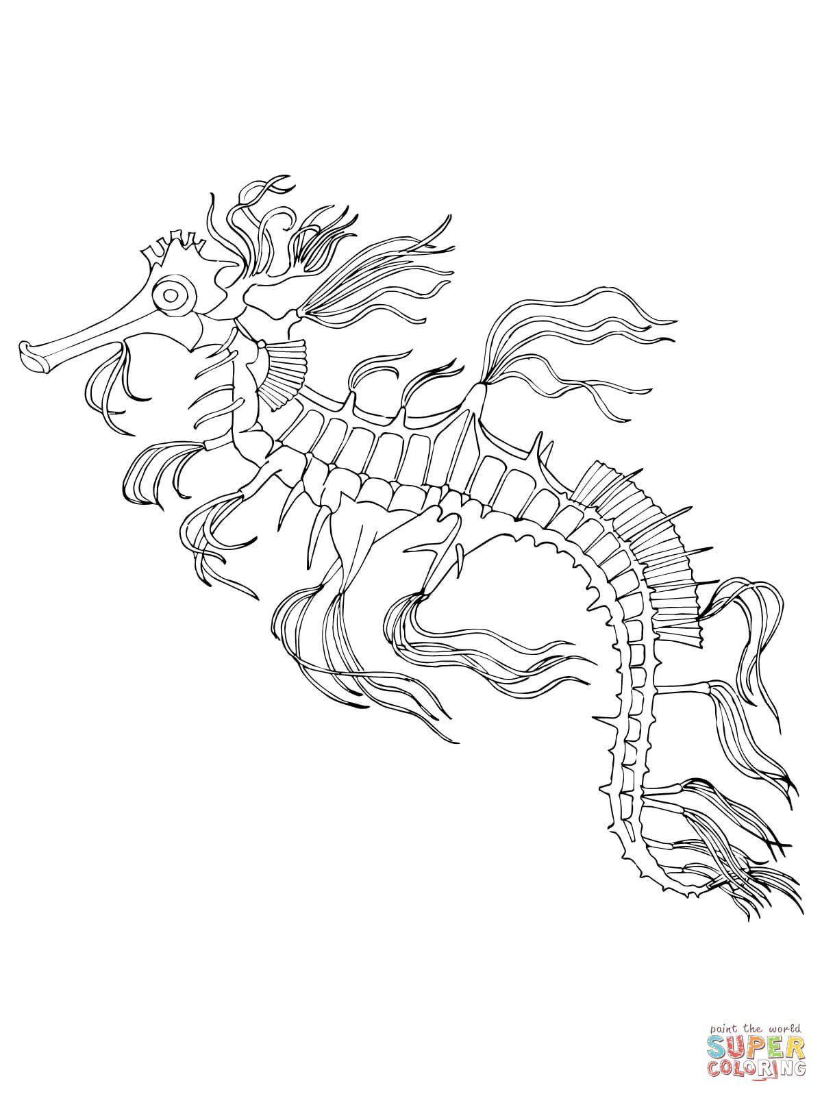 Realistic Dragon Coloring Page Sea Dragon Coloring Page Leafy Seadragon Coloring Page Free Dragon Coloring Page Coloring Pages Coloring Sheets For Boys