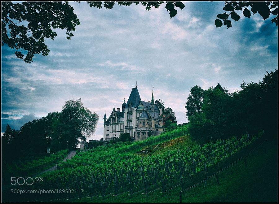Schloss Meggenhorn by ernstkramer