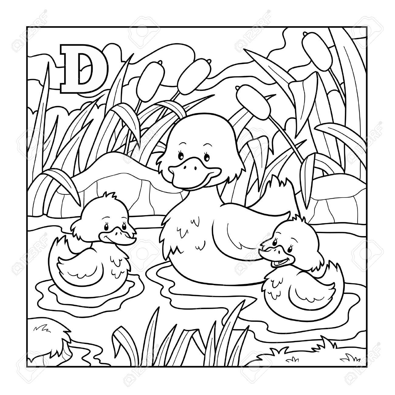 Coloring book (duck), colorless illustration (letter D