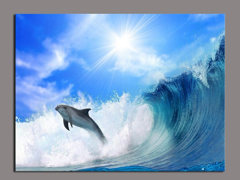 Coloring Pages For Adults Dolphins : Panel decorative surfing dolphins big sun art picture painting on