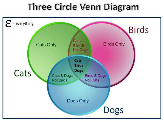 three circle venn diagram example for math journal
