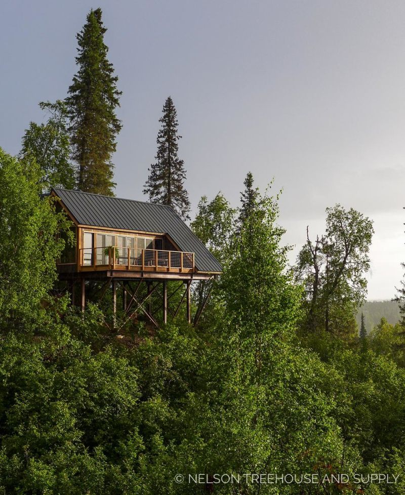 Princess Cruises' Alaskan treehouse offers awesome views of Denali  #treehouse #treehousehotel #treehouseresort #getaway