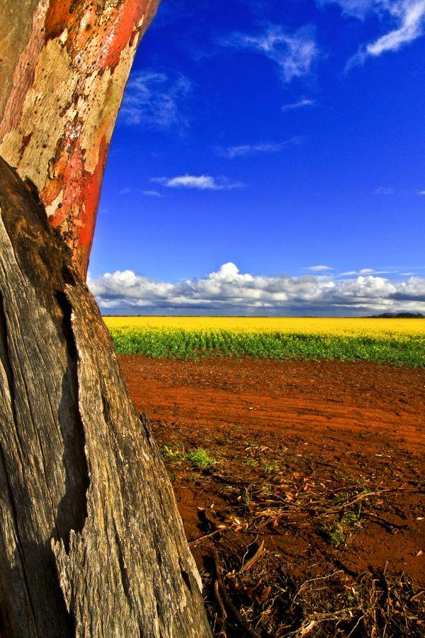 Los colores de la naturaleza, en Australia.