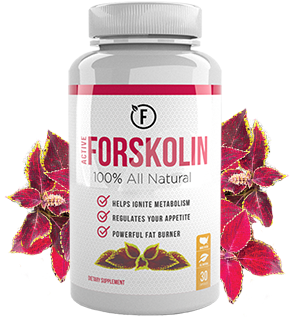 Active Forskolin Health And Fitness Health Fitness Cat
