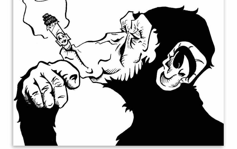 Terpopuler 30 Gambar Anime Merokok Keren Fashion Hitam Putih Merokok Gorilla Hewan Seni Poster Pribadi Dinding Gambar Lukisan Kanv Di 2020 Gambar Anime Gambar Kartun