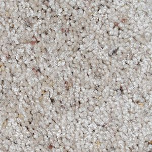 Most Popular Carpet Type Textured Saxony Carpet Home