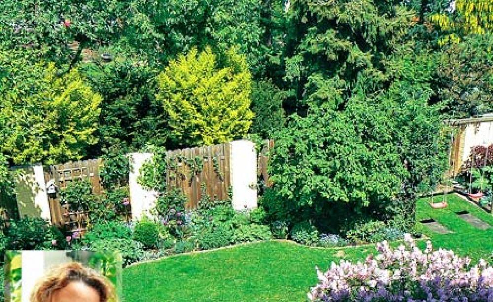 Raffinierte Sichtschutz Ideen Unserer User Bepflanzung Sichtschutz Ideen Gartengestaltung