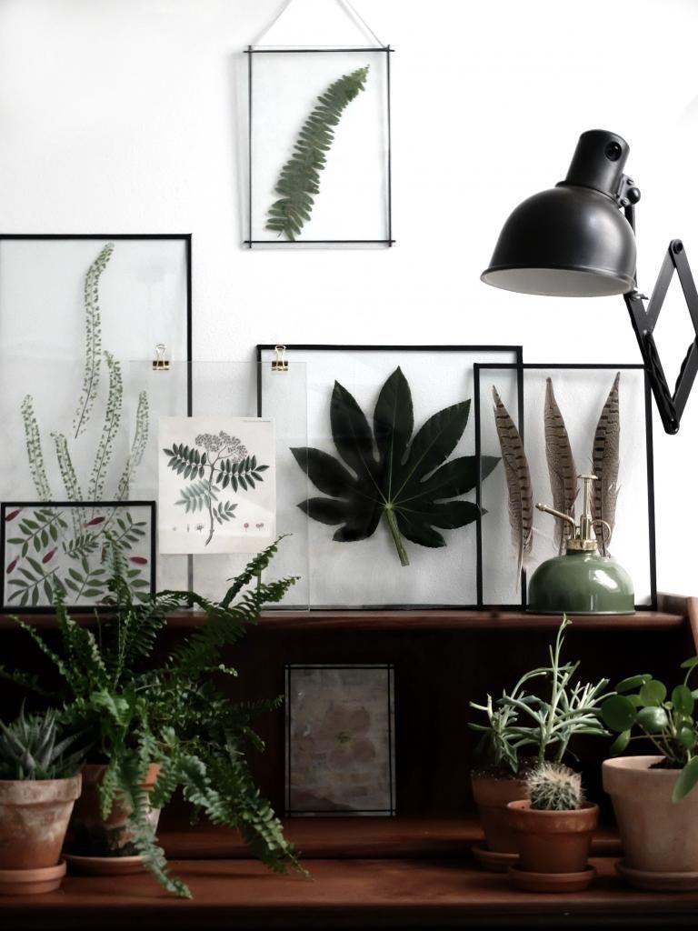 DIY: Transparente Rammer | House art | Pinterest | Bilderrahmen ...