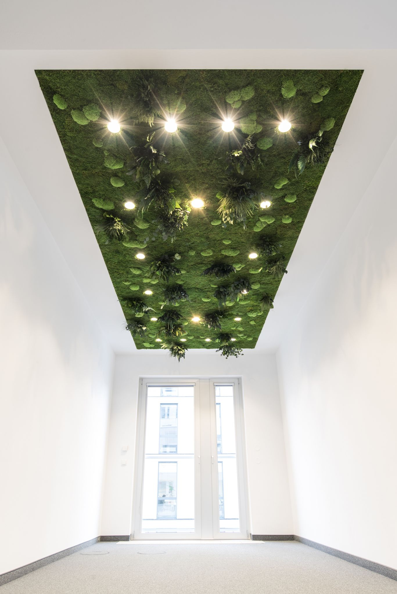 Ceiling Garden Seems Almost Like An Optical Illusion