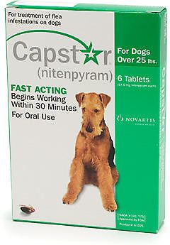 Capstar Flea Tablets Green For Dogs Dogs Fleas Dog Supplements