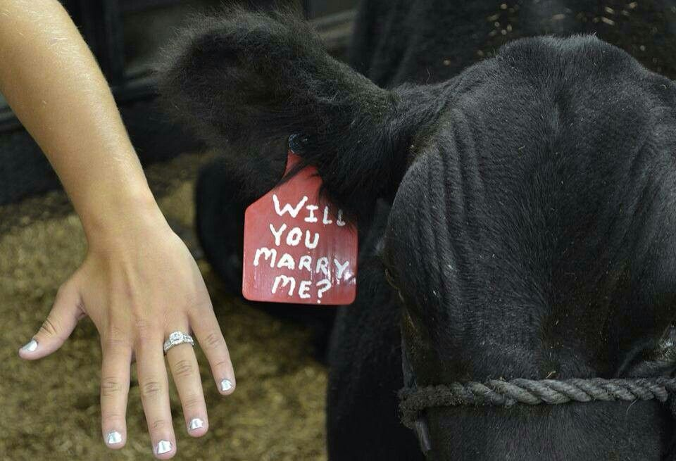 I Hope The Guy I Marry Proposes Like This Ashlyn He Will Need To