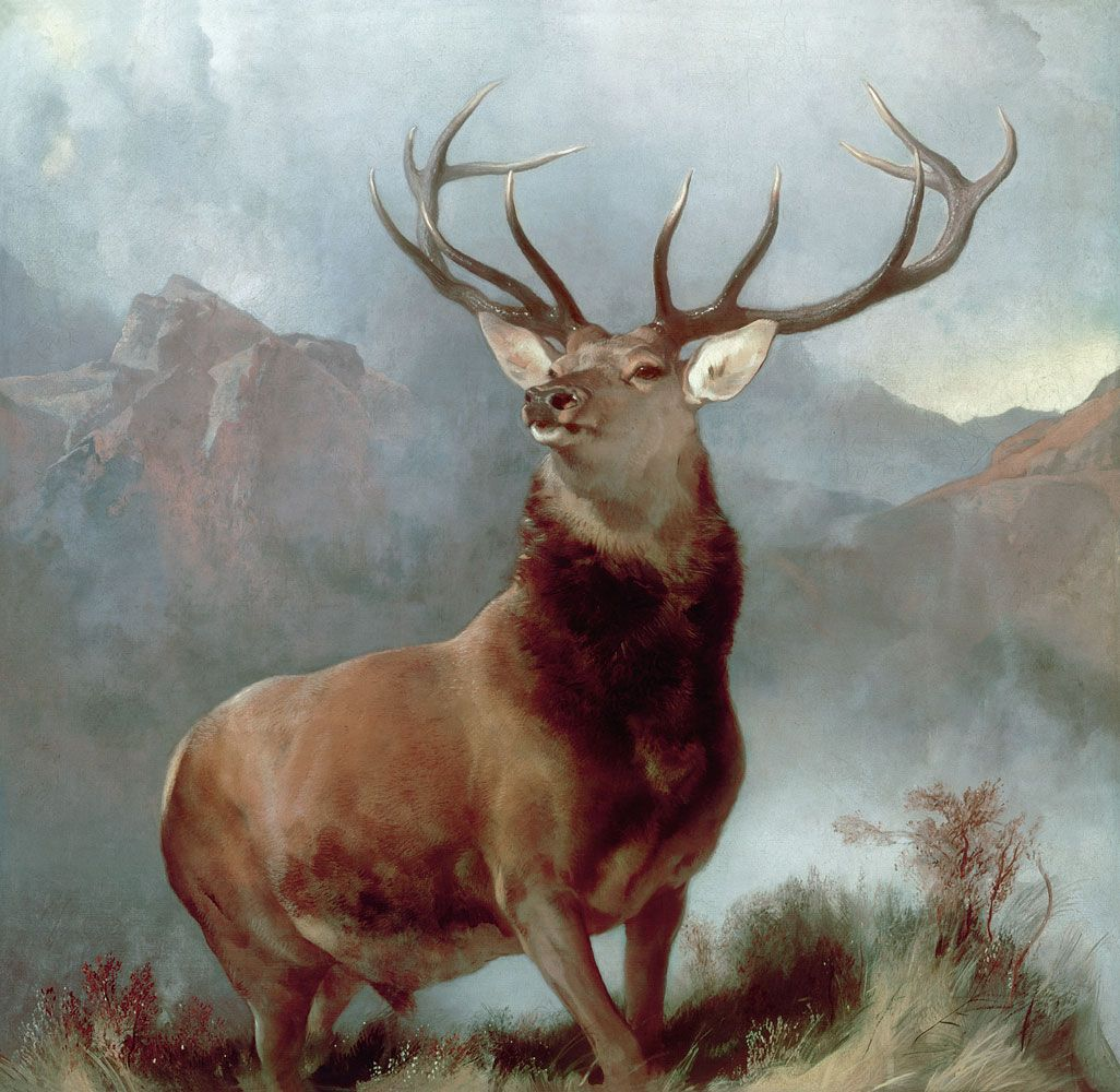 Monarch Of The Glen 1851 Sir Edwin Landseer Love Art Turn