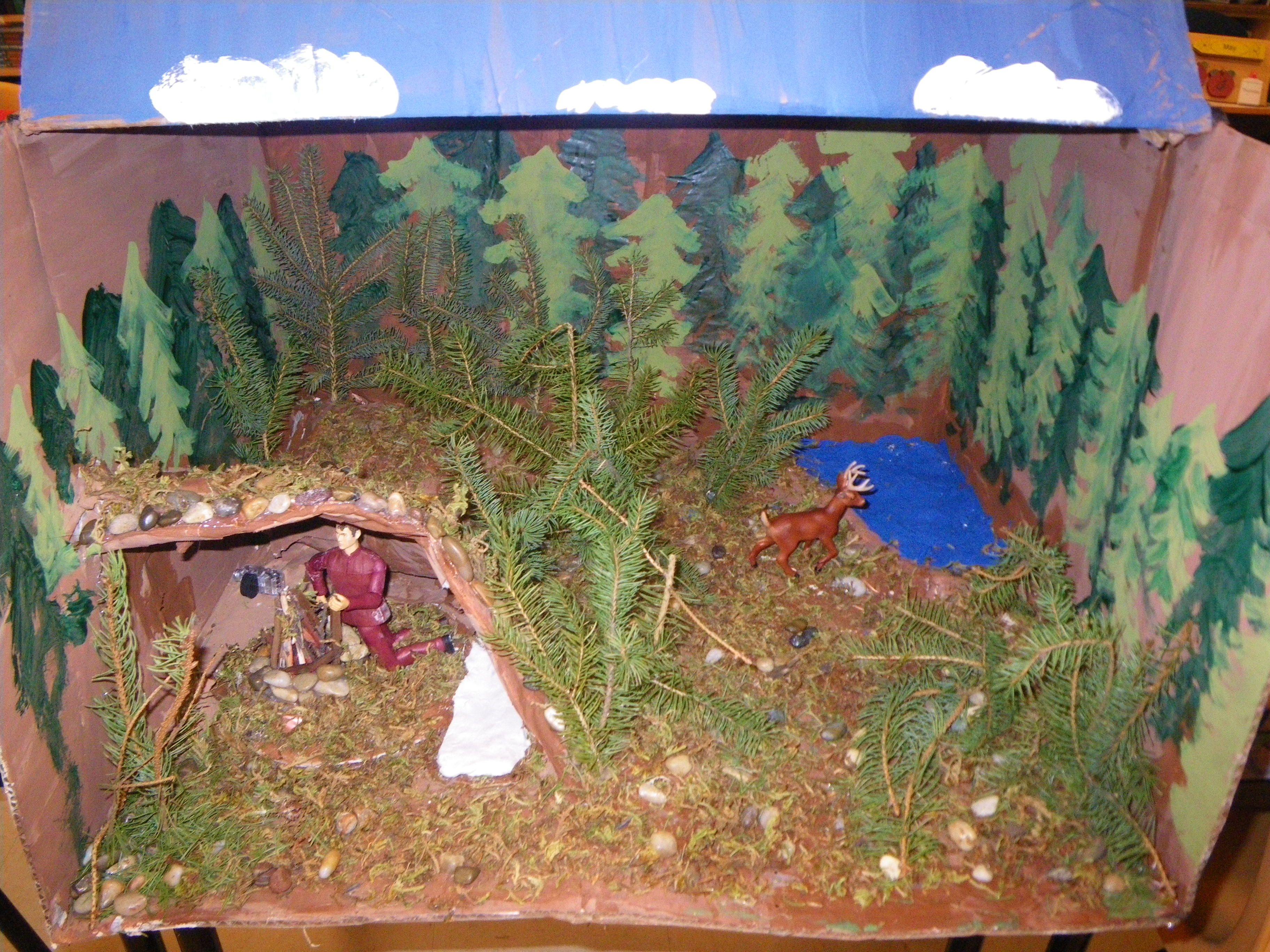 Hatchet Book Cover Ideas : Hatchet diorama teaching literature projects