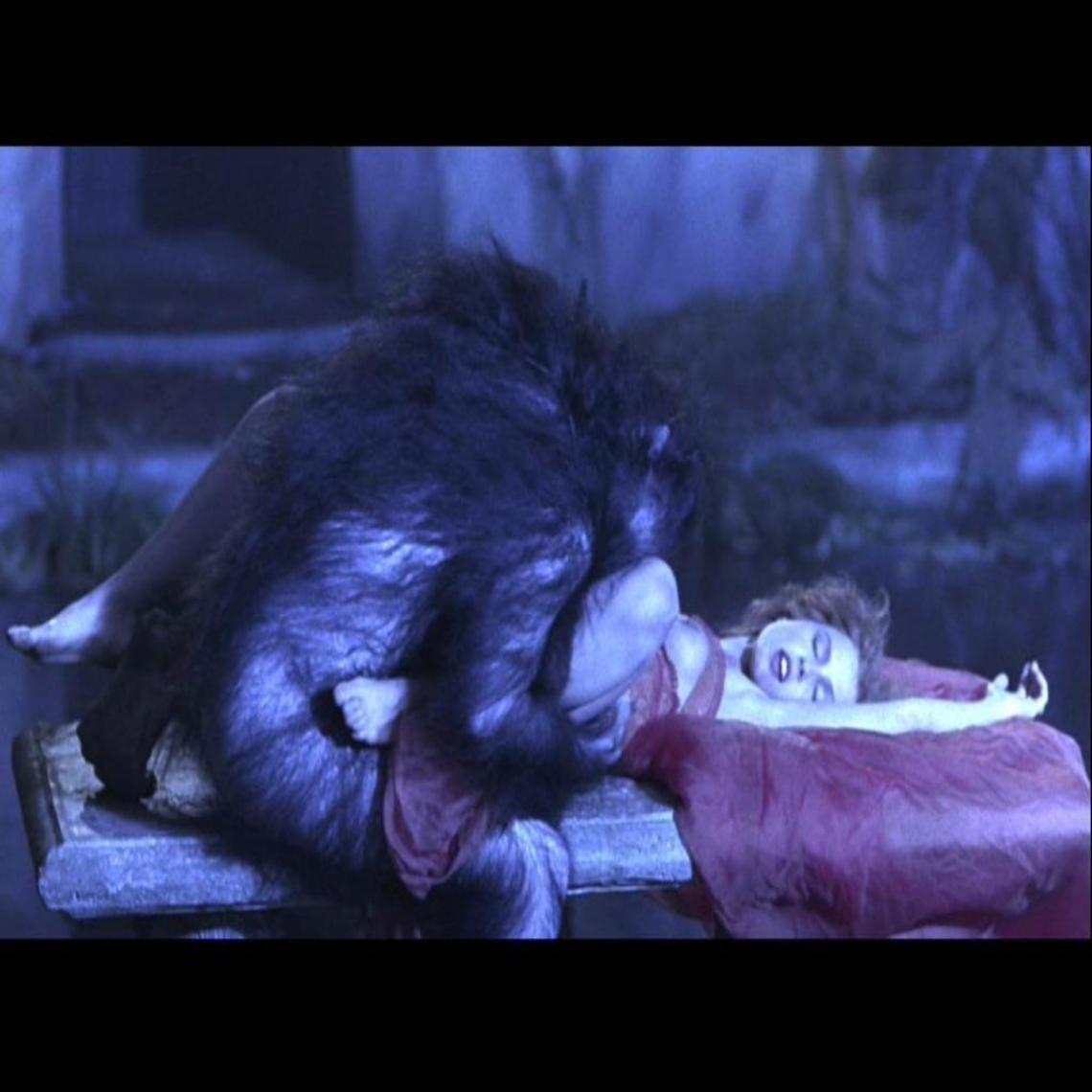 Bram Stokers Dracula   Lycanthrope   Pinterest   Bram ...