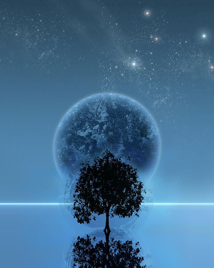 Tree Of Life.   Artist:Andreas Leonidou