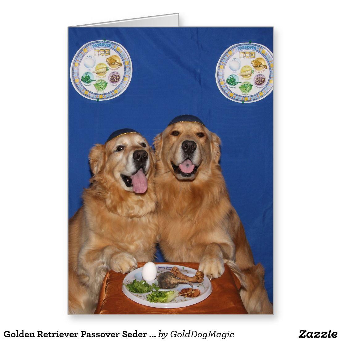 Golden retriever passover seder plate card zazzle greeting cards golden retriever passover seder plate greeting card m4hsunfo