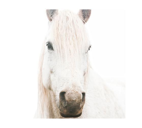White on White Horse Framed Print by Jennifer Meyers | Gallery Wall ...
