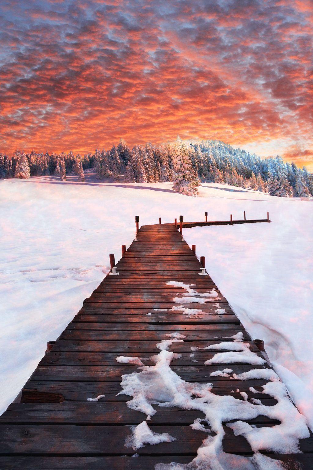 Into the Cold by Thy-Darkest-Hour.deviantart.com