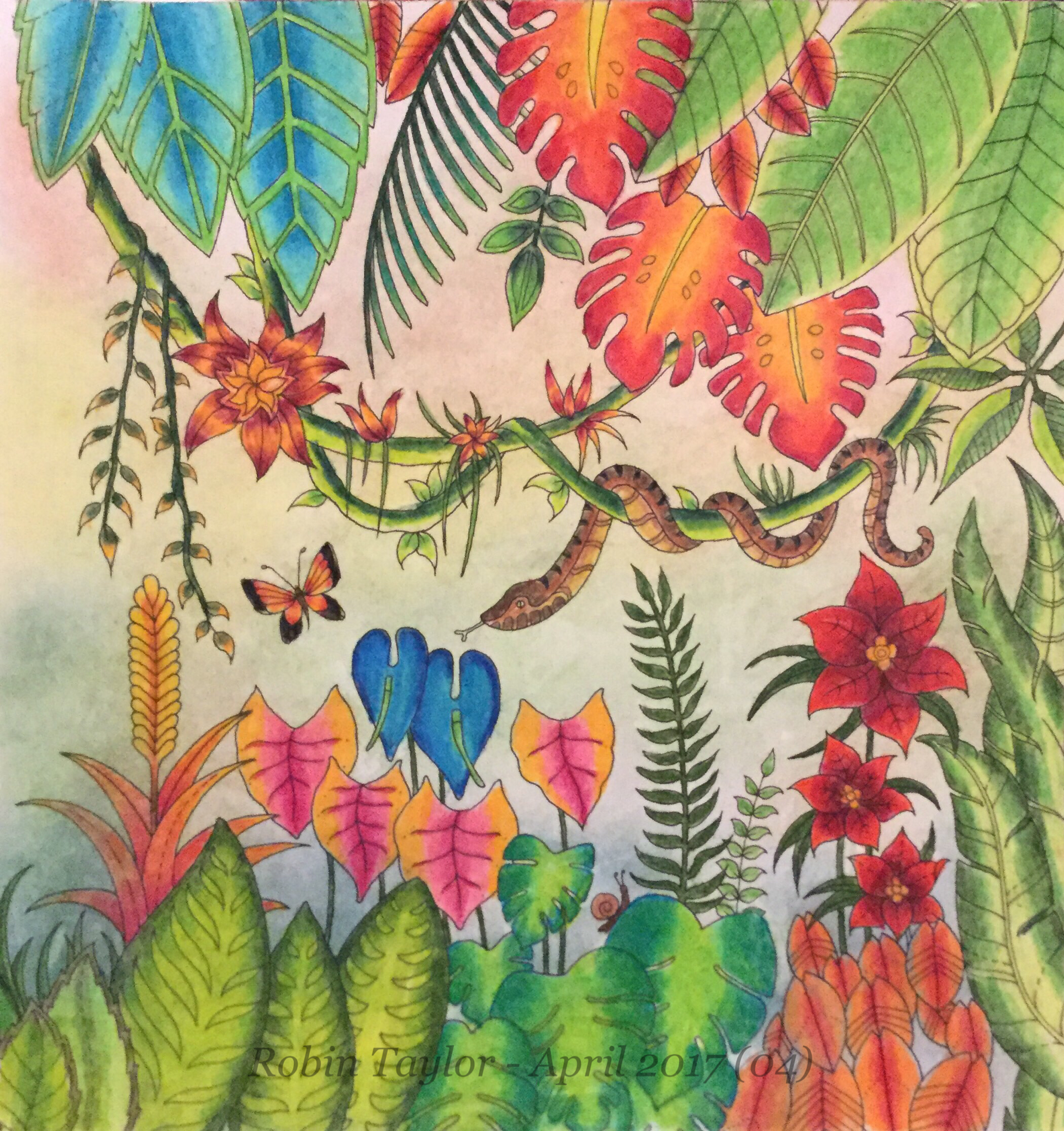 magical jungle by johanna basford colored with prismacolor