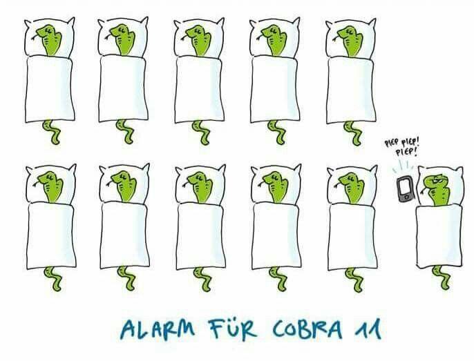Alarm für Cobra 11 | Cobra 11 | Funny, Comics, Humor