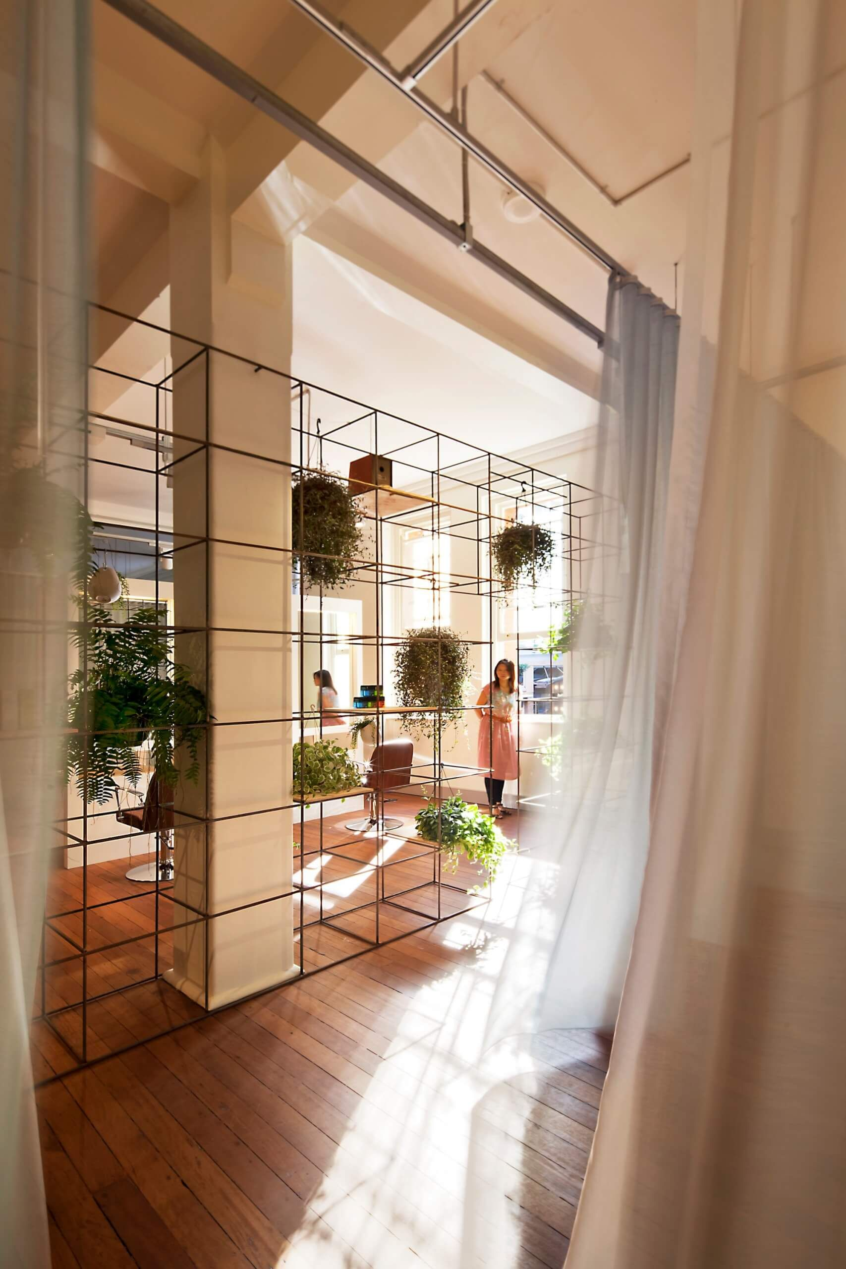 Metal Grid Holds Plants And Acts As Room Partition -