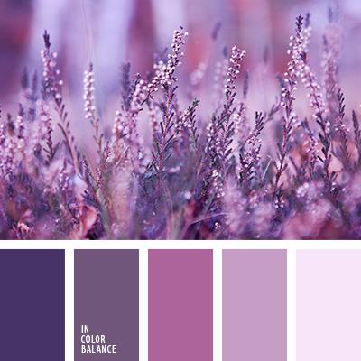 Color Palette 1724 Combination Colors Monochrome Color