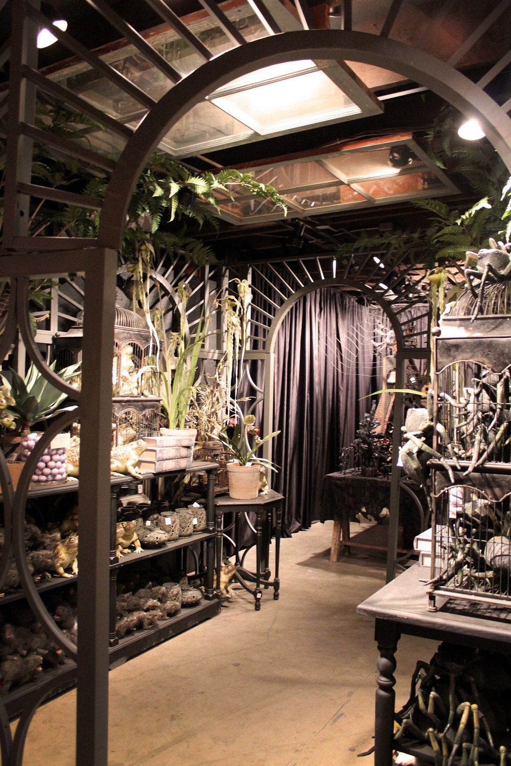 Roger's Gardens Halloween displaygoth up your greenhouse