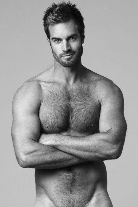 hairy chest levin Harvey