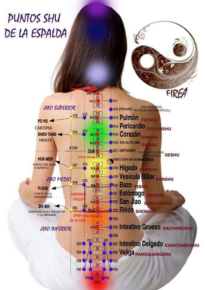 La acupuntura espalda puntos de en