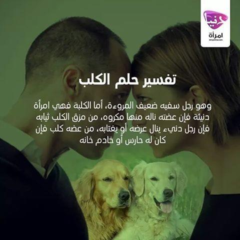 Donya Imraa دنيا امرأة On Instagram هل حلمتي يوما ما بالكلب إليك التفسير فيما يلي تفسير الأحلام الأحلام الكلب حلم دنيا امرأة كويت Lol Animals Awa
