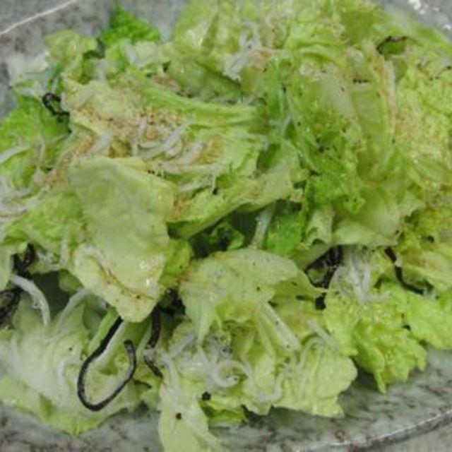 白菜のナムル風サラダ by 花ぴーさん | レシピ, 料理, 白菜