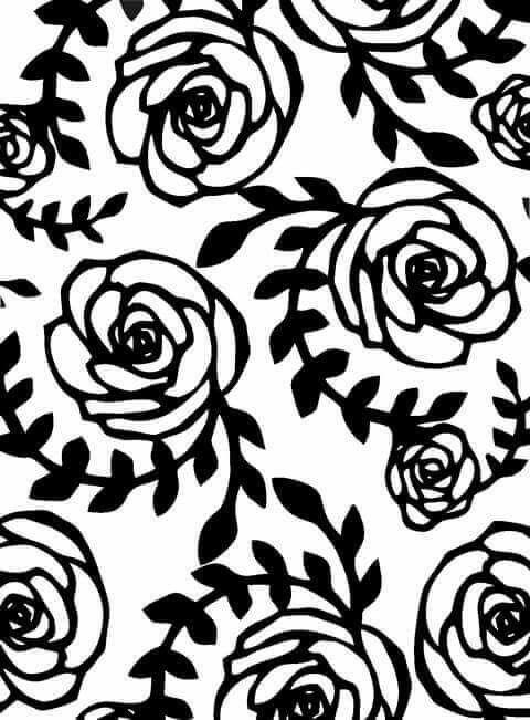 Pin doa karoline moura em pelculas pinterest adesivo adesivos para unhas rendas preto e branco vetores folhas arquivo brancos fundo imagem de fundo para iphone altavistaventures Gallery