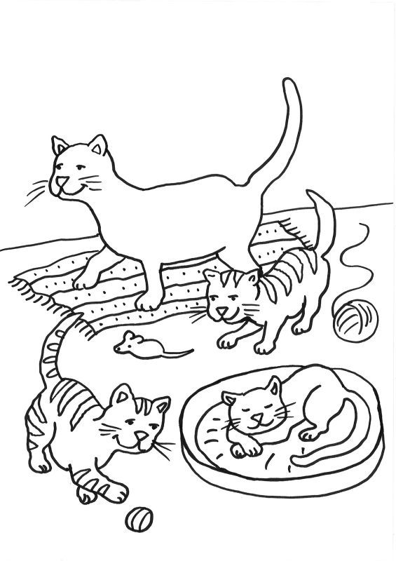 Ausmalbilder Die Katze Ausmalbild Katzen Katzenfamilie Ausmalen Kostenlos Ausdrucken Ideen