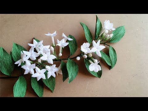ABC TV | How To Make Stephanotis Floribunda Paper Flower From Crepe Pape...
