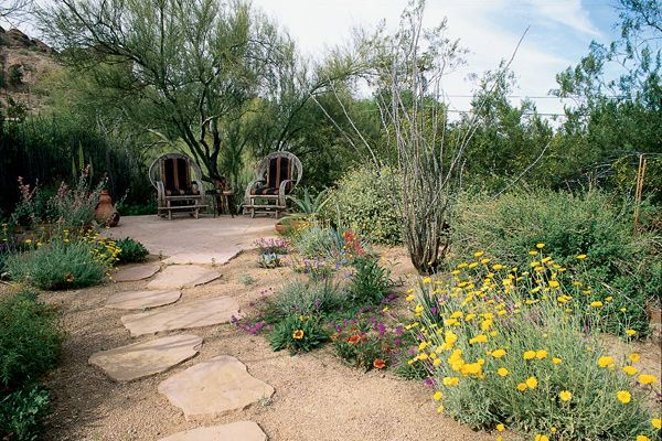 xeriscape landscaping with style