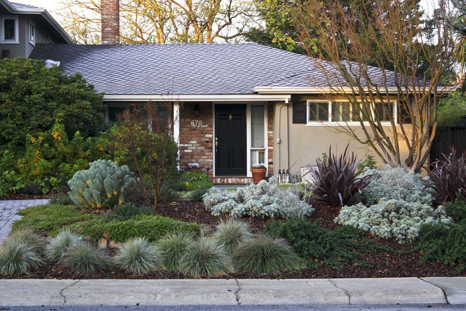 Beautiful Front Yard Drought Resistant Landscape With A Modern