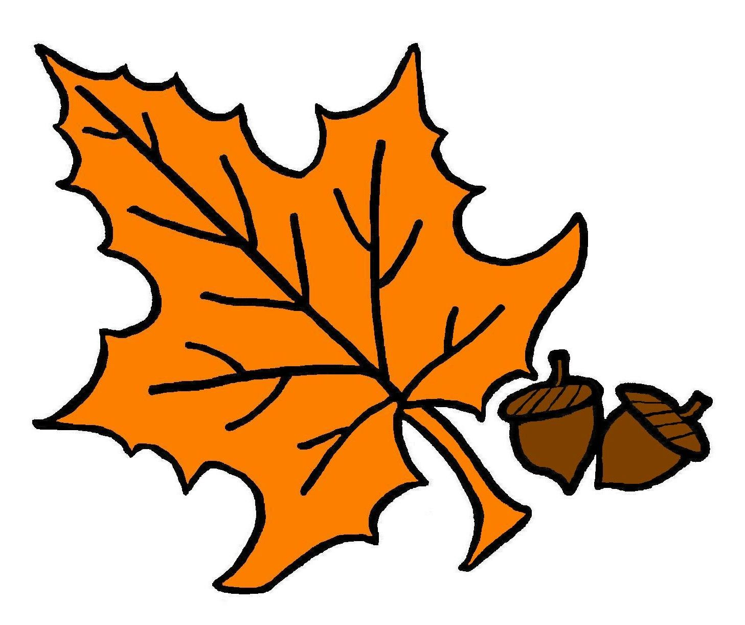 fall leaves tree with autumn leaves illustrationlor clip art 2 rh pinterest com oak leaf clipart oak leaf clip art free
