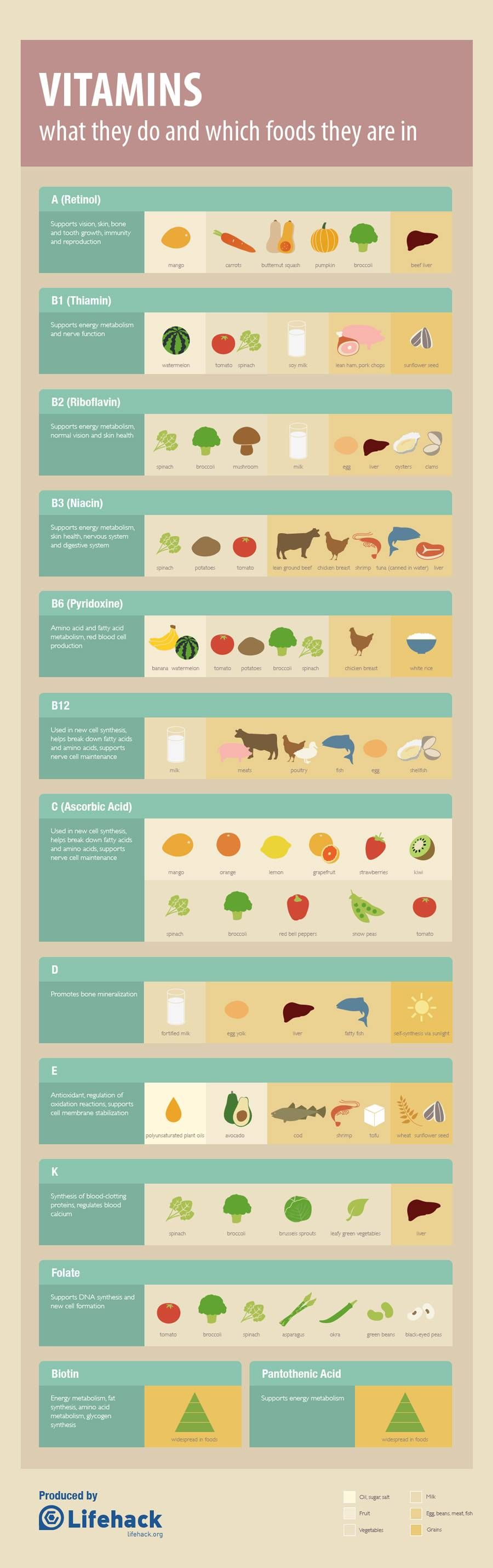 Vitamins What they do and where to find them [Infographic